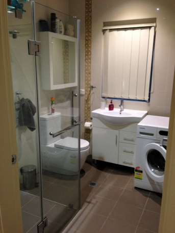 My bathroom & washing machine (no dryer)