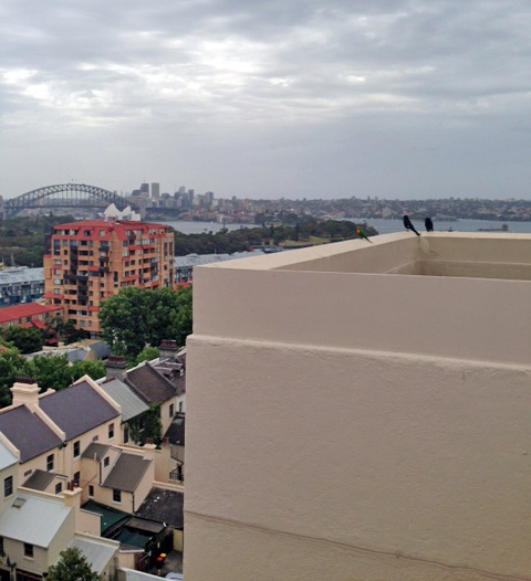 One of the apartments that I toured in Sydney. Such a beautiful view!